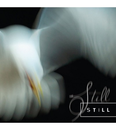 Aria Rostami & Daniel Blomquist – Still