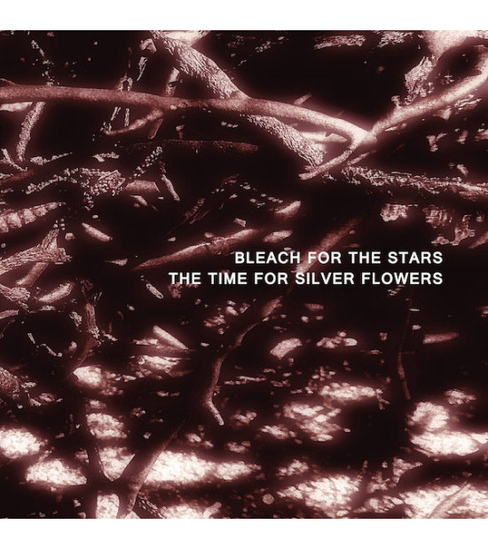 Bleach For The Stars - The Time For Silver Flowers