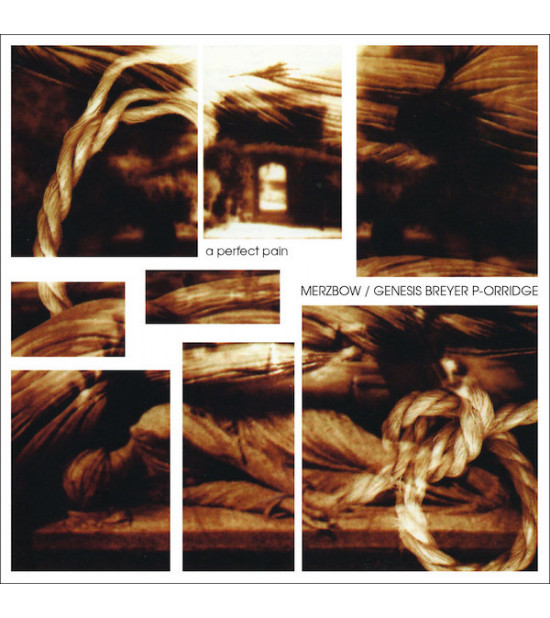 Merzbow/Genesis Breyer P Orridge - A Perfect Pain LP