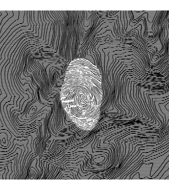 Micromelancolie - Strom Noir - 49°05'19,3″N 22°34'04,0'E
