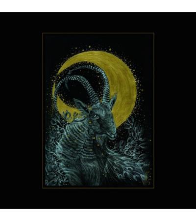Monocube - The Rituals