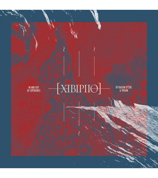 Raison D'Etre & Troum - XIBIPII0. In and Out of Experience