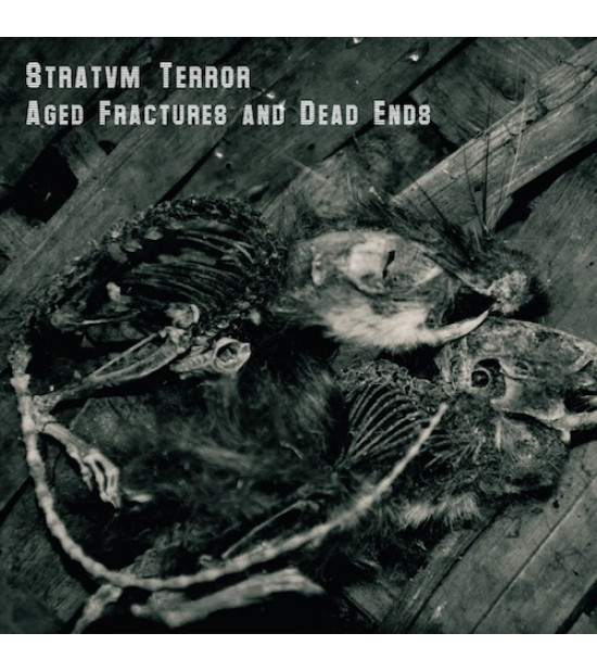 Stratvm Terror - Aged Fractures And Dead Ends