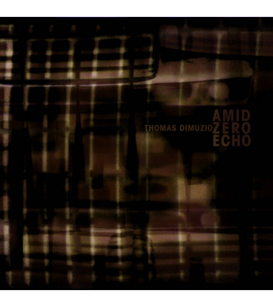 Thomas Dimuzio - Amid Zero Echo