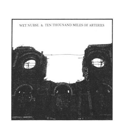 Wet Nurse & Ten Thousand Miles Of Veins - Split